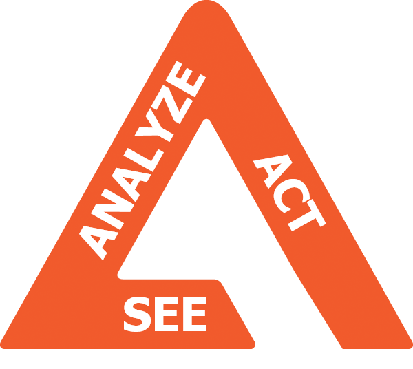 see analyze act